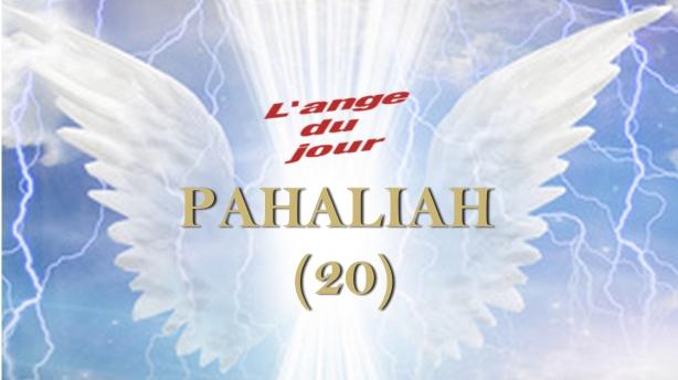 20 PAHALIAH