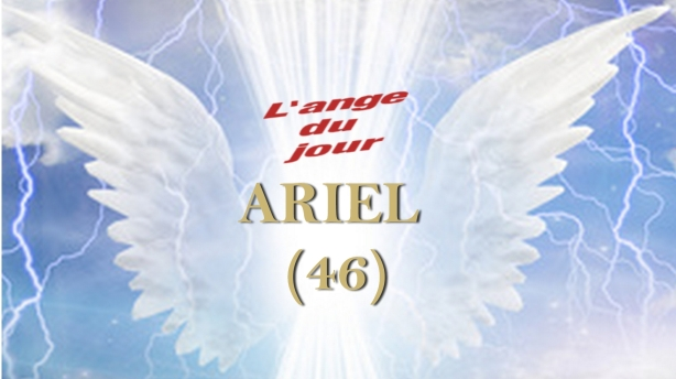 46 ARIEL