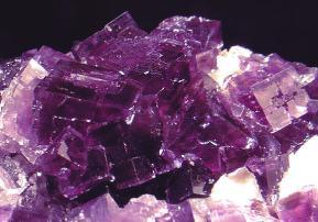 fluorine violette